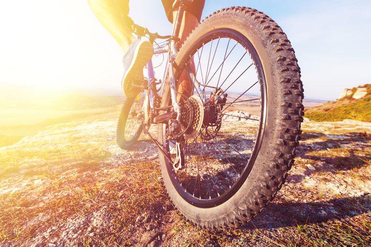 Rozmery kolies horského bicykla