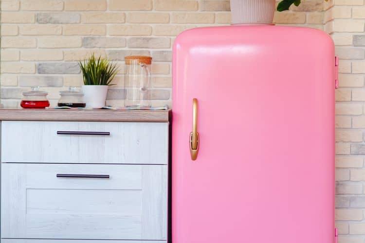 Jednodverová ružová retro chladnička