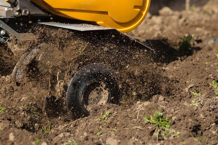 Dôležité parametre pri výbere kultivátora