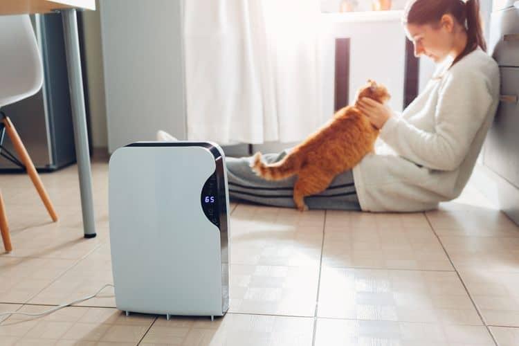 Ako vybrať odvlhčovač vzduchu