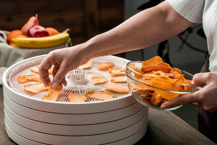 Ako vybrať sušičku ovocia