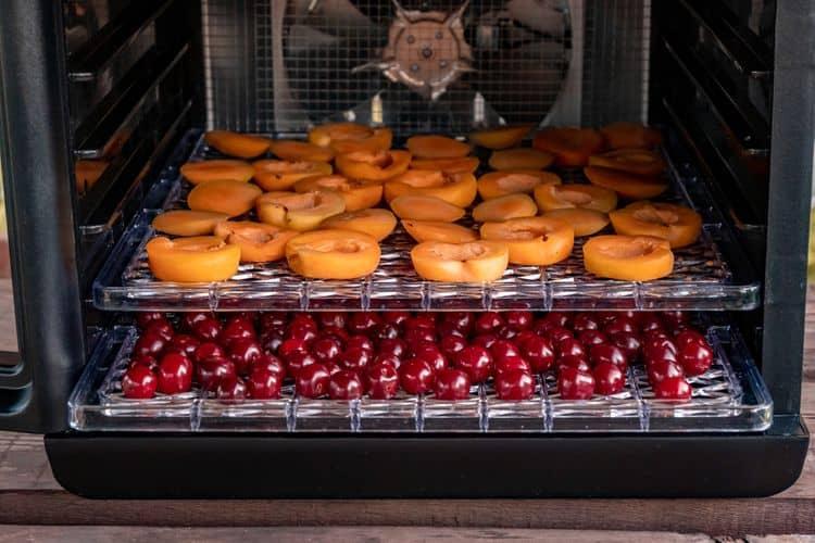Sušička ovocia – funkcie a príslušenstvo